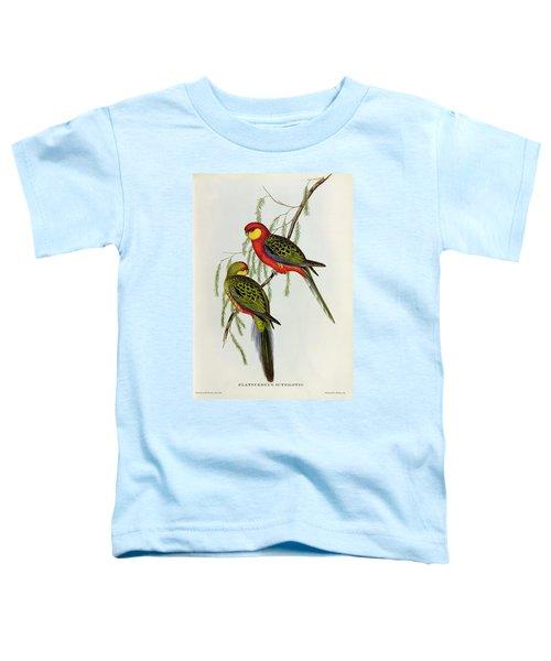 Platycercus Icterotis Toddler T-Shirt by John Gould