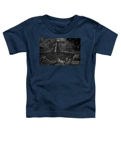 Hayden Swirls  Toddler T-Shirt by James Dean