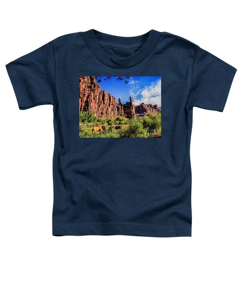 Private Home Canyon Dechelly Toddler T-Shirt by Bob and Nadine Johnston