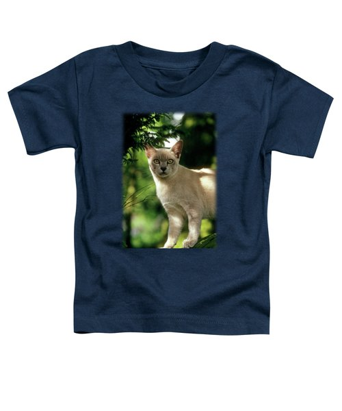 Wilham Toddler T-Shirt by Jon Delorme