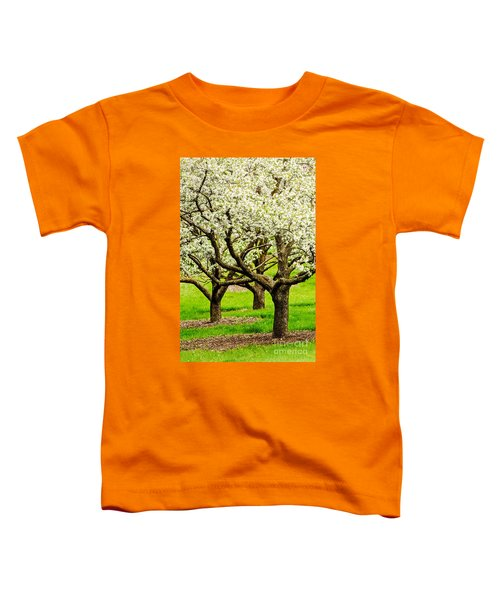 Apple Blossoms Toddler T-Shirt by Joe Mamer