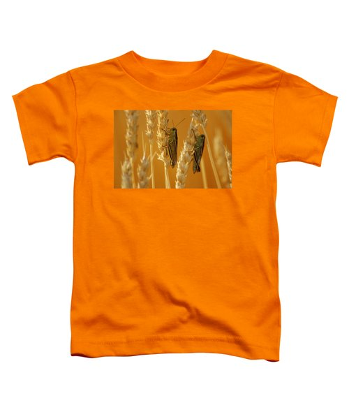 Grasshoppers On Wheat, Treherne Toddler T-Shirt by Mike Grandmailson
