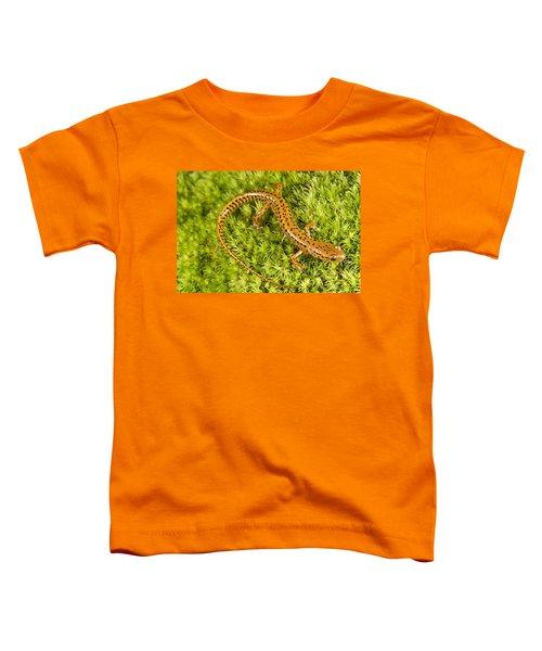Longtail Salamander Eurycea Longicauda Toddler T-Shirt by Jack Goldfarb