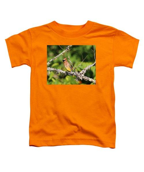 Cedar Waxwing  Toddler T-Shirt by Carol R Montoya