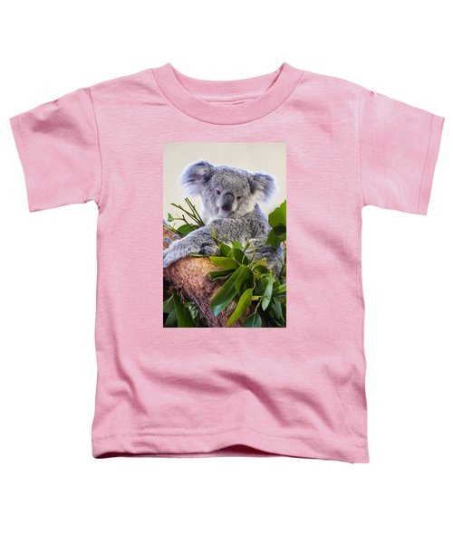 Koala On Top Of A Tree Toddler T-Shirt by Chris Flees