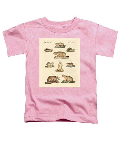 Marmots And Moles Toddler T-Shirt by Splendid Art Prints