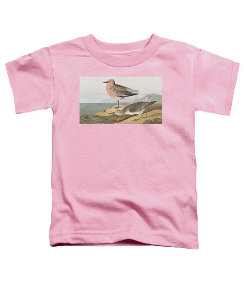 Red-breasted Sandpiper  Toddler T-Shirt by John James Audubon