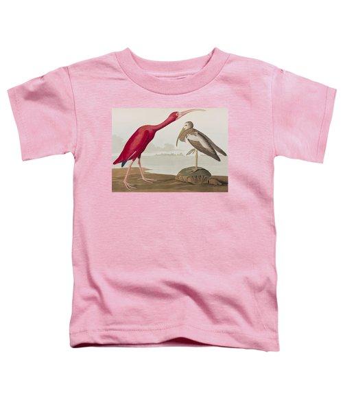 Scarlet Ibis Toddler T-Shirt by John James Audubon