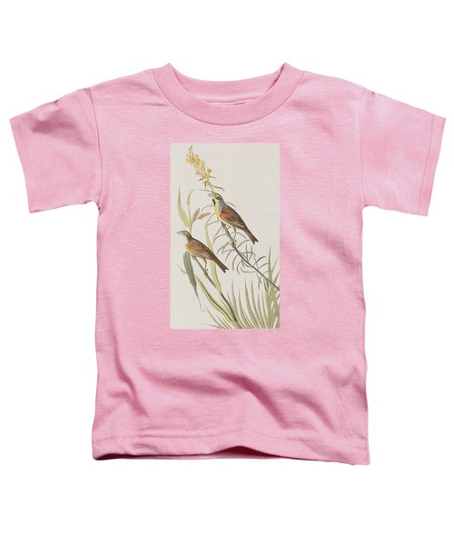 Black-throated Bunting Toddler T-Shirt by John James Audubon