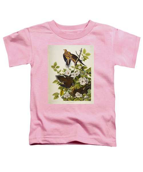 Carolina Turtledove Toddler T-Shirt by John James Audubon