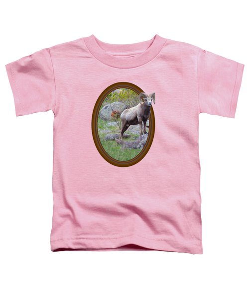 Colorado Bighorn Toddler T-Shirt by Shane Bechler