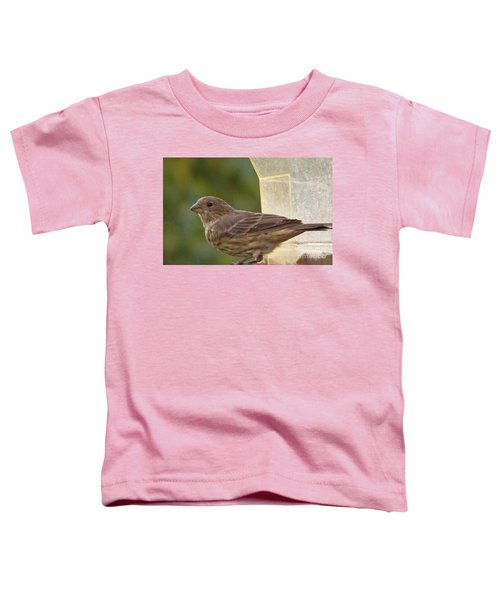 Crossbill Female Portrait      September    Indiana Toddler T-Shirt by Rory Cubel