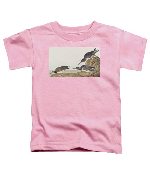 Purple Sandpiper Toddler T-Shirt by John James Audubon