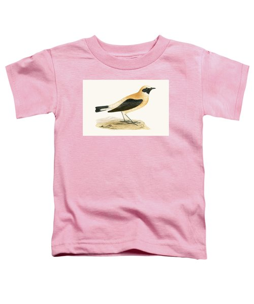 Russet Wheatear Toddler T-Shirt by English School