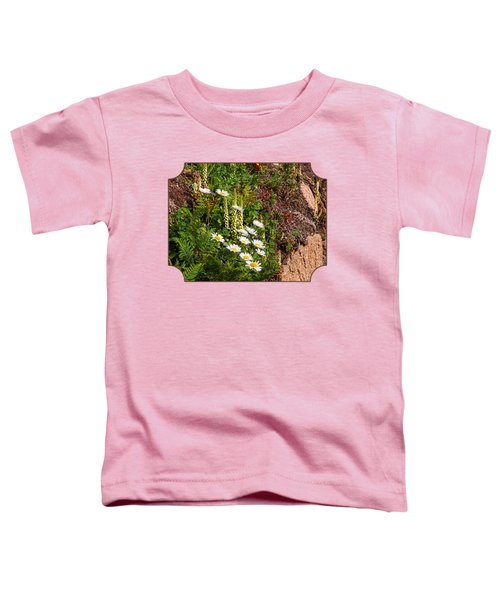 Wild Daisies In The Rocks Toddler T-Shirt by Gill Billington