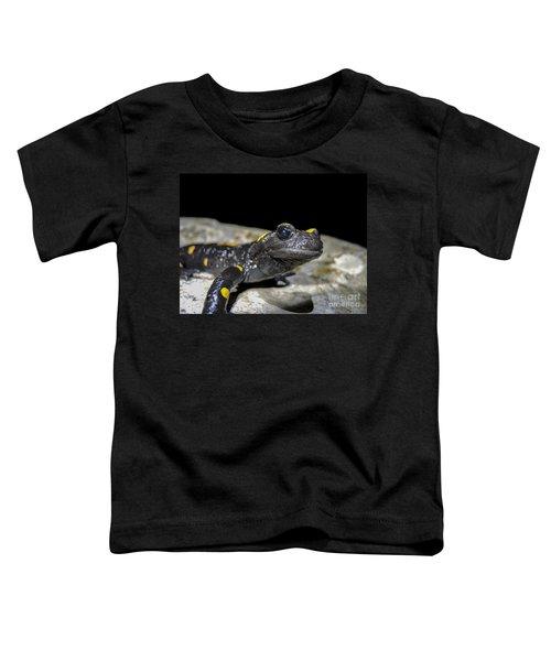 Fire Salamander Salamandra Salamandra Toddler T-Shirt by Shay Levy