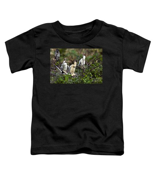 Baby Anhinga Toddler T-Shirt by Mark Newman