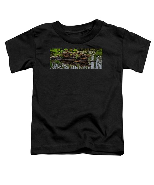 Baby Alligators Reflection Toddler T-Shirt by Dan Sproul