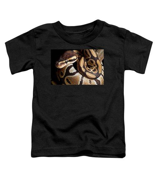 Ball Python Python Regius Toddler T-Shirt by David Kenny
