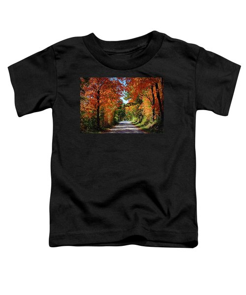 Blaze Of Glory Toddler T-Shirt by Cricket Hackmann