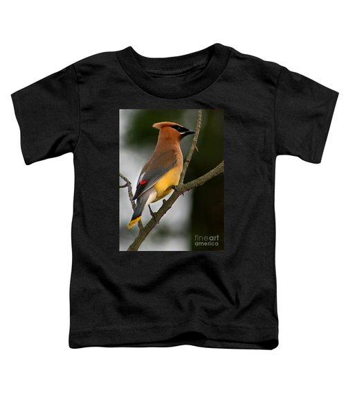 Cedar Wax Wing II Toddler T-Shirt by Roger Becker