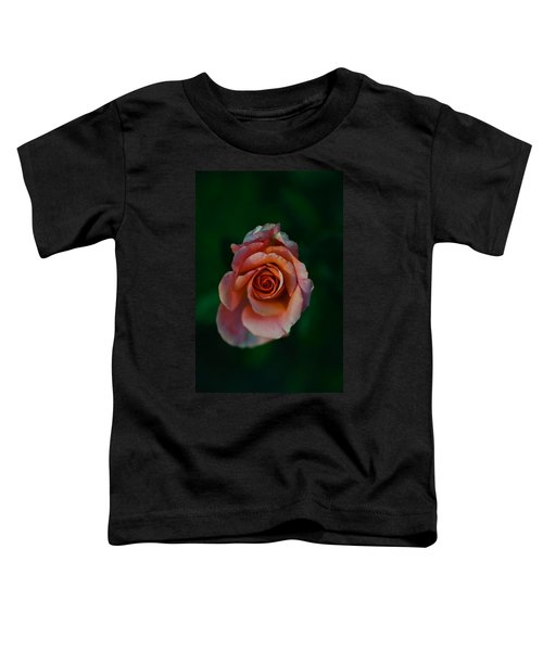 Close-up Of A Pink Rose, Beverly Hills Toddler T-Shirt by Panoramic Images