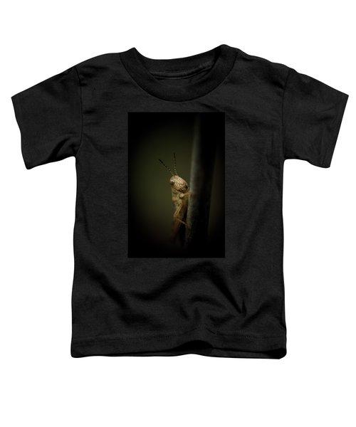 hop Toddler T-Shirt by Shane Holsclaw