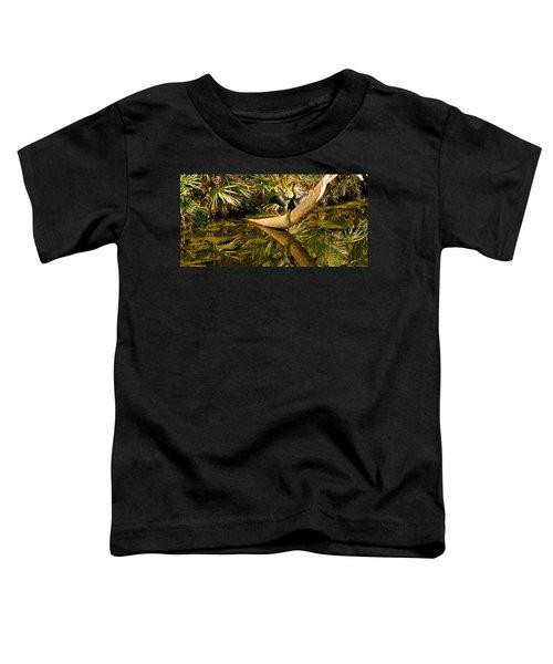 Oriental Darter Anhinga Melanogaster Toddler T-Shirt by Panoramic Images