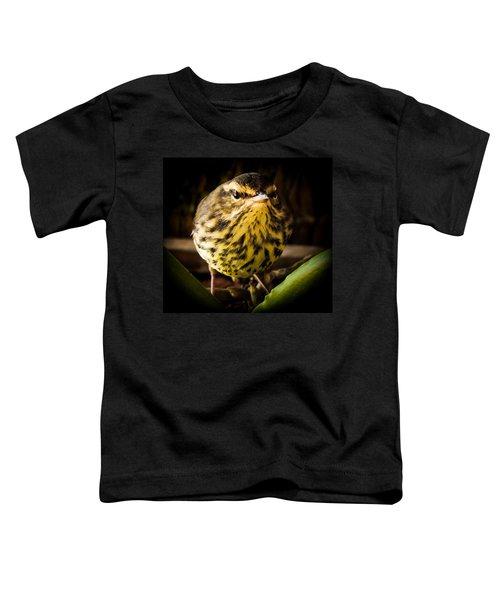 Round Warbler Toddler T-Shirt by Karen Wiles