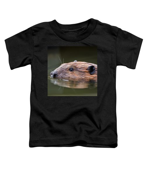 The Beaver Square Toddler T-Shirt by Bill Wakeley