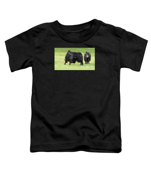 Yaketty Yak Toddler T-Shirt by Liz Leyden