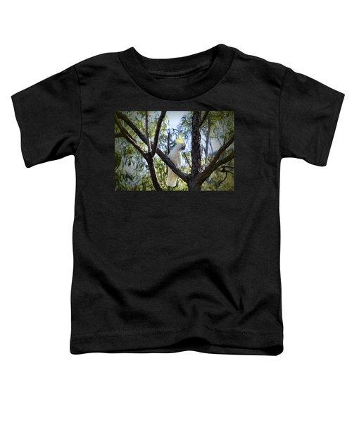Sulphur Crested Cockatoo Toddler T-Shirt by Douglas Barnard