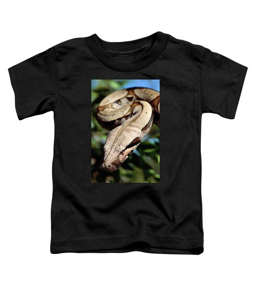 Boa Constrictor Boa Constrictor Toddler T-Shirt by Claus Meyer