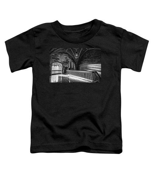 Cold Rock Warm Light Toddler T-Shirt by CJ Schmit