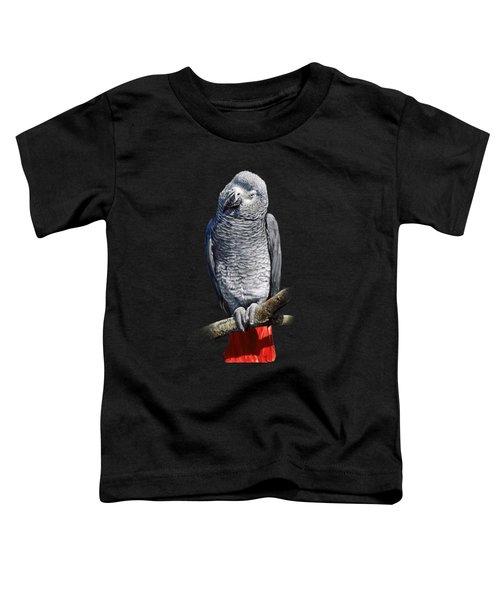 African Grey Parrot C Toddler T-Shirt by Owen Bell