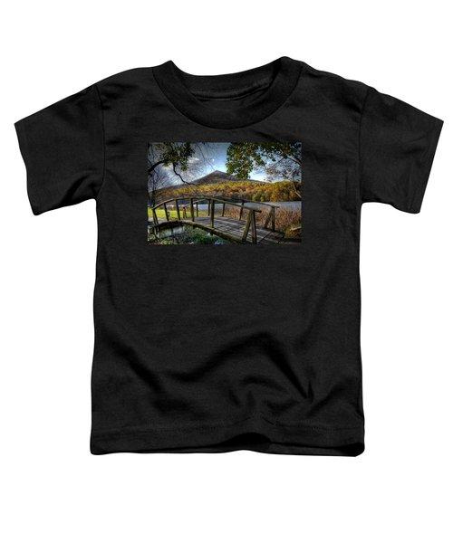 Foot Bridge Toddler T-Shirt by Todd Hostetter