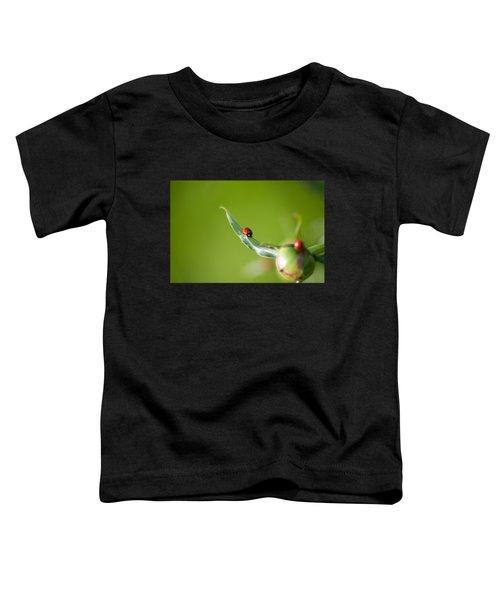Ladybug On Flower Toddler T-Shirt by Konstantin Sevostyanov