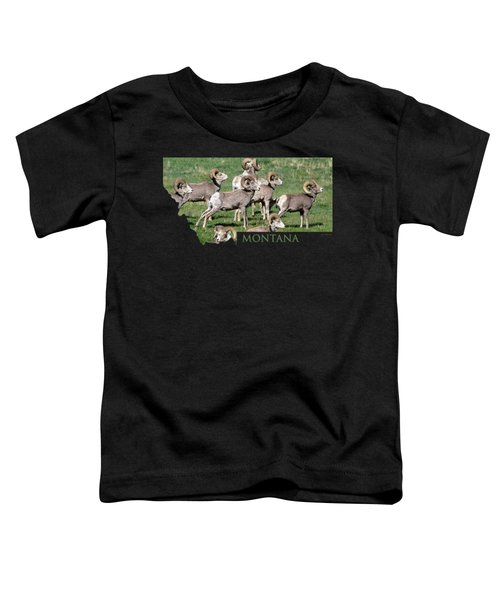 Montana -bighorn Rams Toddler T-Shirt by Whispering Peaks Photography