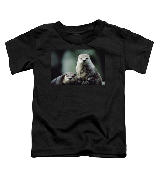 North American River Otter Lontra Toddler T-Shirt by Gerry Ellis