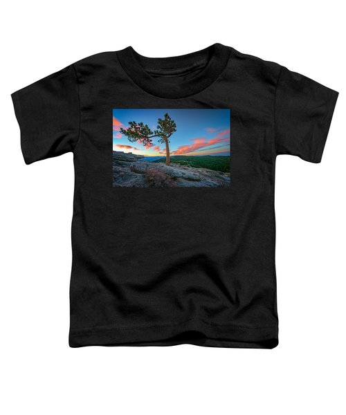 Sentinel Dawn Toddler T-Shirt by Rick Berk