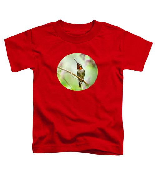 Hummingbird Looking For Love Toddler T-Shirt by Christina Rollo