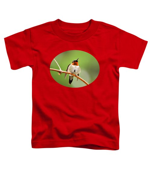 Male Ruby-throated Hummingbird Toddler T-Shirt by Christina Rollo