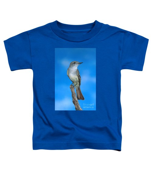 Ash-throated Flycatcher Toddler T-Shirt by Anthony Mercieca