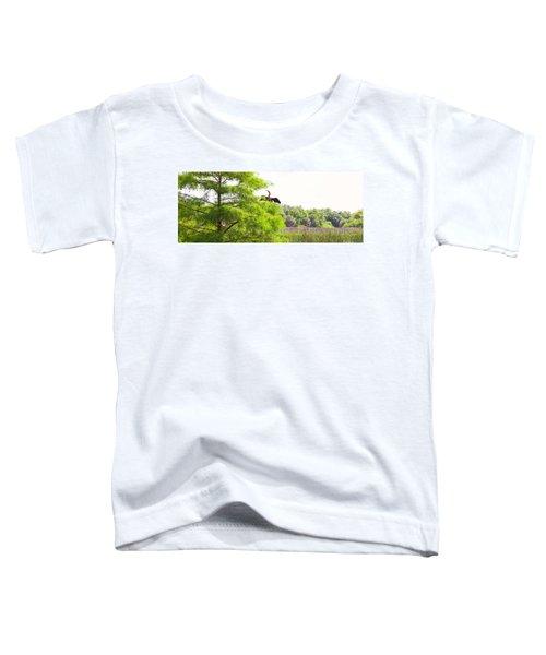 Anhinga Anhinga Anhinga On A Tree Toddler T-Shirt by Panoramic Images