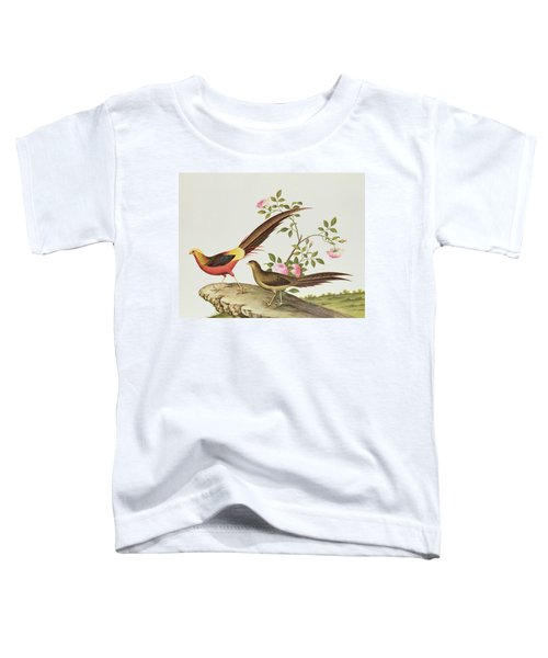 A Golden Pheasant Toddler T-Shirt by Chinese School