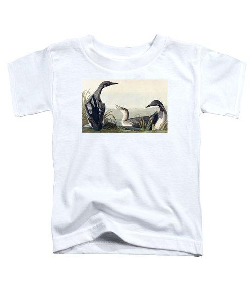 Black Throated Diver  Toddler T-Shirt by John James Audubon