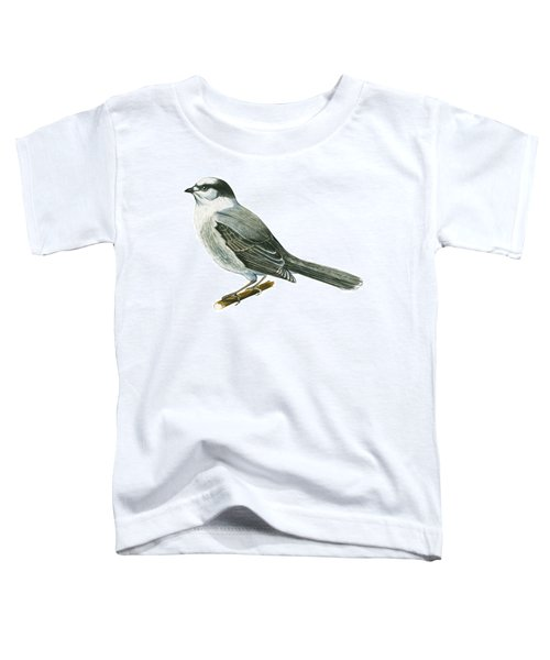Canada Jay Toddler T-Shirt by Anonymous