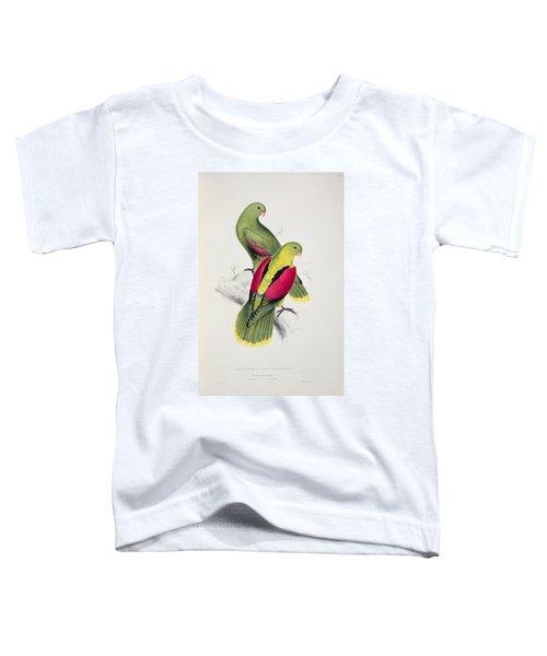 Crimson Winged Parakeet Toddler T-Shirt by Edward Lear