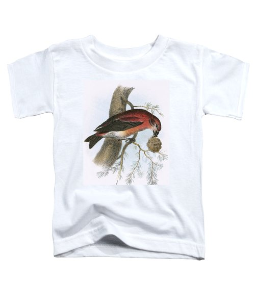 Crossbill Toddler T-Shirt by English School