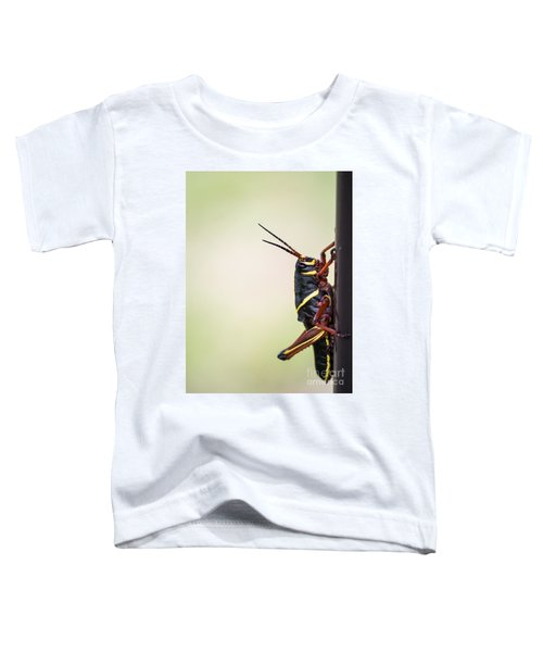 Giant Eastern Lubber Grasshopper Toddler T-Shirt by Edward Fielding